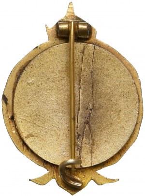 Odznaka, Pierwszy Pułk Ułanów Rycerza von Brudemanna U1 1914-1915