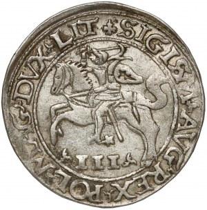 Zygmunt II August, Trojak Tykocin 1565 -