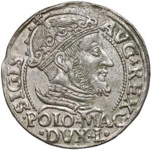 Zygmunt II August, Grosz na stopę polską 1547, Wilno