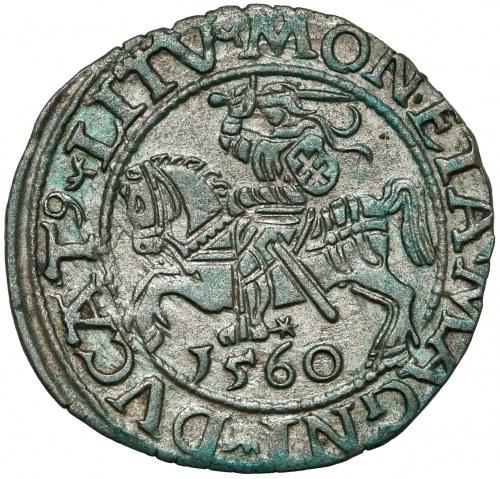 Zygmunt II August, Półgrosz Wilno 1560