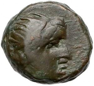 Greece, Panticapaeum, AE 11