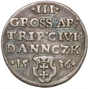 Zygmunt I Stary, Trojak Gdańsk 1536 - DANNCZK