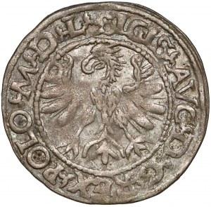 Zygmunt II August, Półgrosz Tykocin 1566 - MAŁY Jastrzębiec - b.rzadki