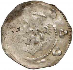 Śląsk, Ks. Furstenberskie, Kwartnik (1301-1326) - rzadki