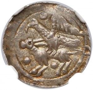 Władysław II Wygnaniec, Denar - Orzeł i Zając - kule