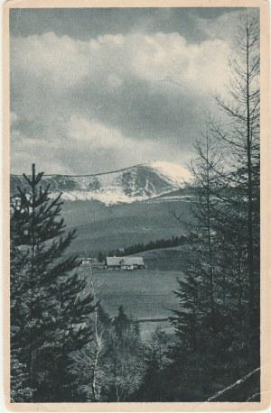 JELENIA GÓRA. Widok na górę; wyd. F. Springer, Kunstverlag, Cunnersdorf i. Rsbg