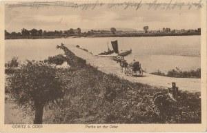 GÓRZYCA. Göritz a. Oder, Partie an der Oder, wyd. Postkartenverlag Kurt Rellach