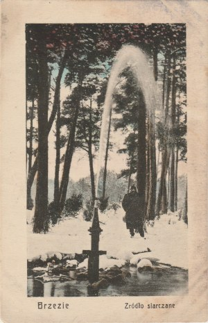 BRZEZIE. Brzezie / Źródło siarczane, wyd. R. R. W., ok. 1920; kolor., stan db