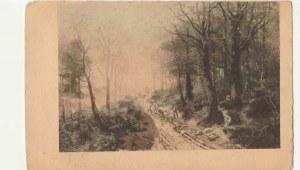 EUROPA. Górska droga, wyd. przed 1918; kolor., stan db, drobne zabrudzenia